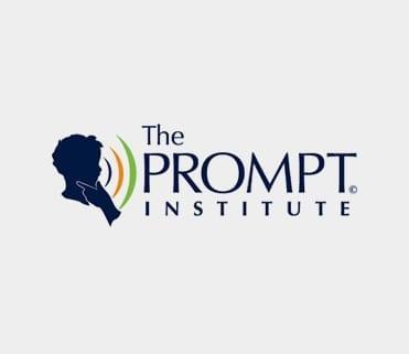prompt_port1